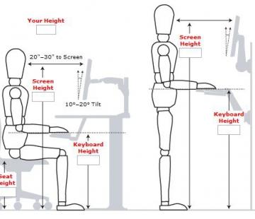 Différents types de bureaux assis-debout : les conclusions d'une étude globale